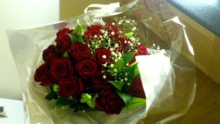 Roser fra Habib