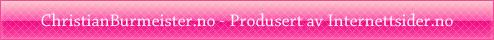 Internettsider.no - Billig profesjonell hjemmeside til din bedrift