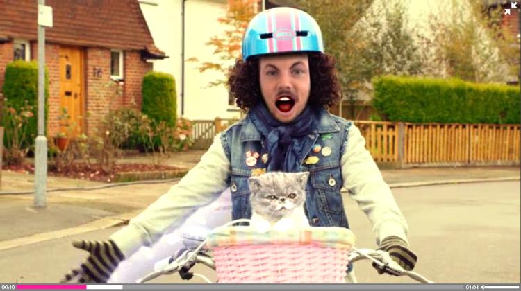 Katt og sykkel