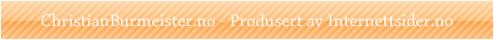 Internettsider.no - Hjemmeside til en fornuftig pris