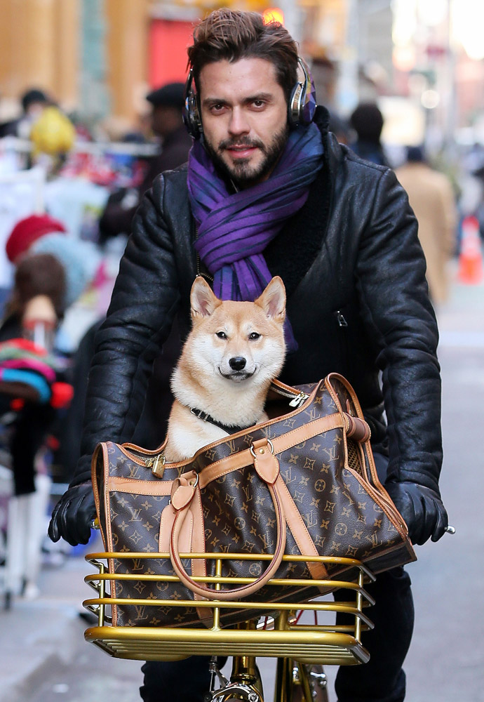 Lorenzo Martone - Louis Vuitton Canvas Dog Carrier