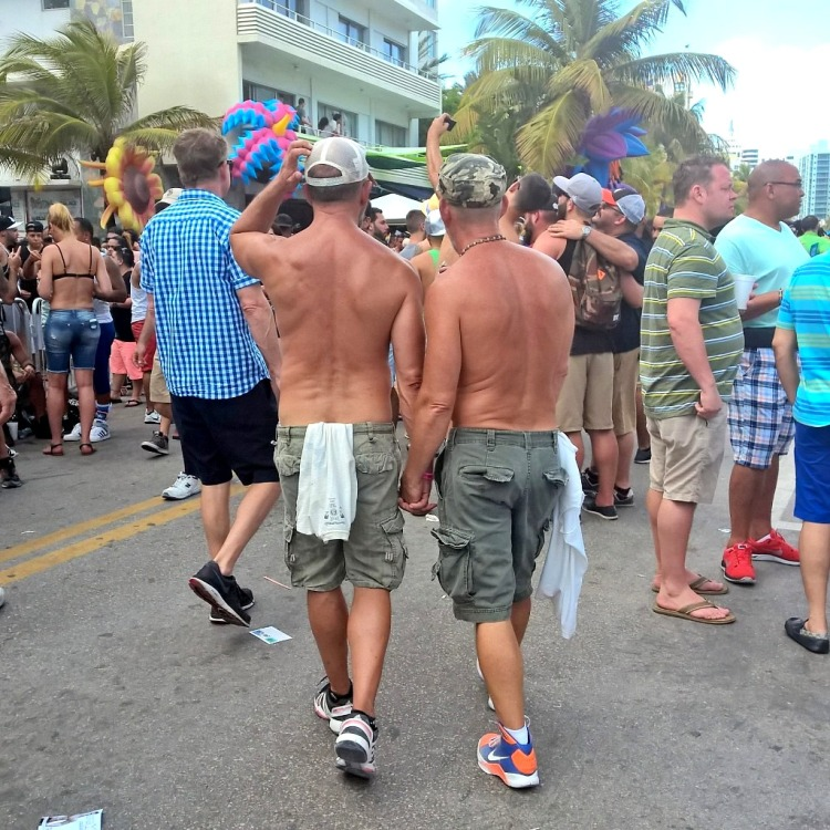 12.04.15 - Gay Pride Miami 3